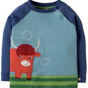 Frugi Little Scene Raglan top long sleeve